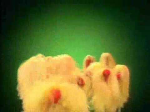 Muppets - Ragg Mopp - R.A.G.G.M.O.P.P.