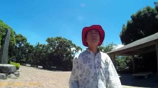 東郷平八郎 Admiral Togo heihachiro togo.