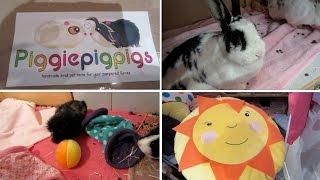Guinea Pig / Bunny - Haul & Vlog