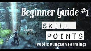 ESO - Beginner Guide: Skill Points FAST and EASY