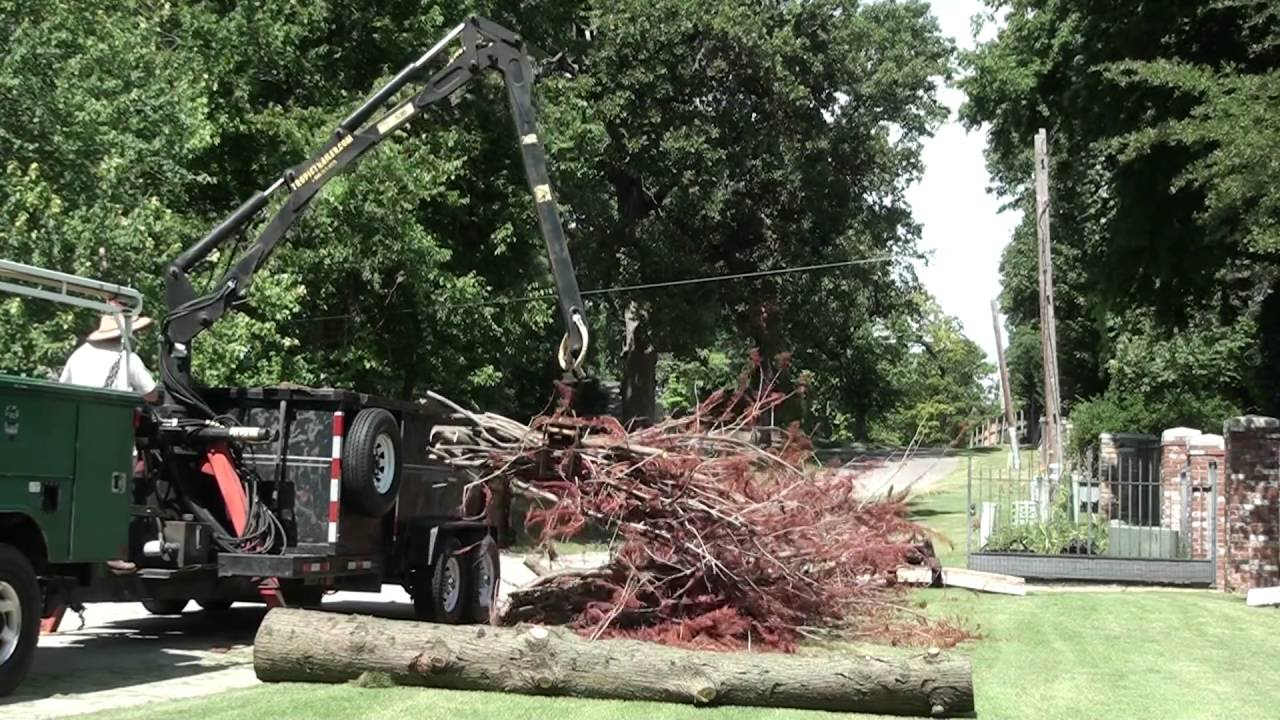 Loading a cypress tree with a grapple loading dump trailer ...
