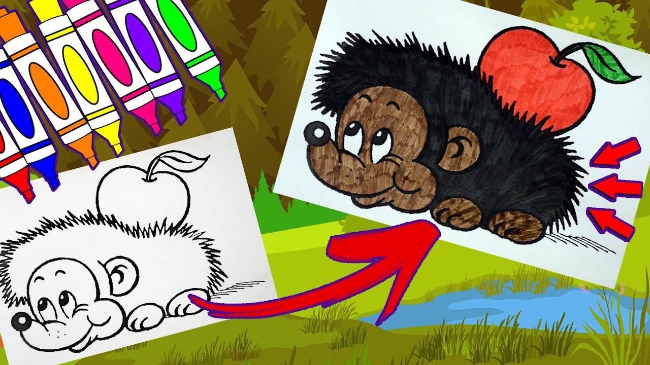 Раскраска Ёжик с Яблоком / Раскраски для детей - YouTube
