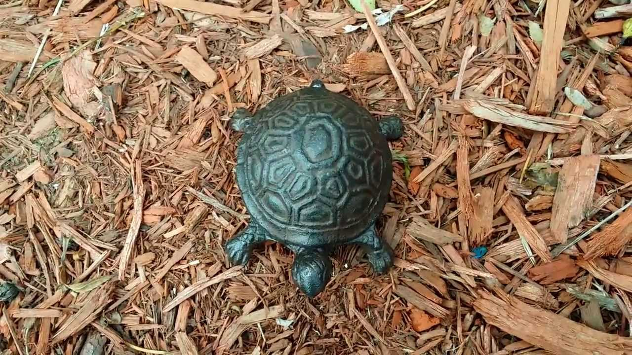 Hide a Key Turtle Box