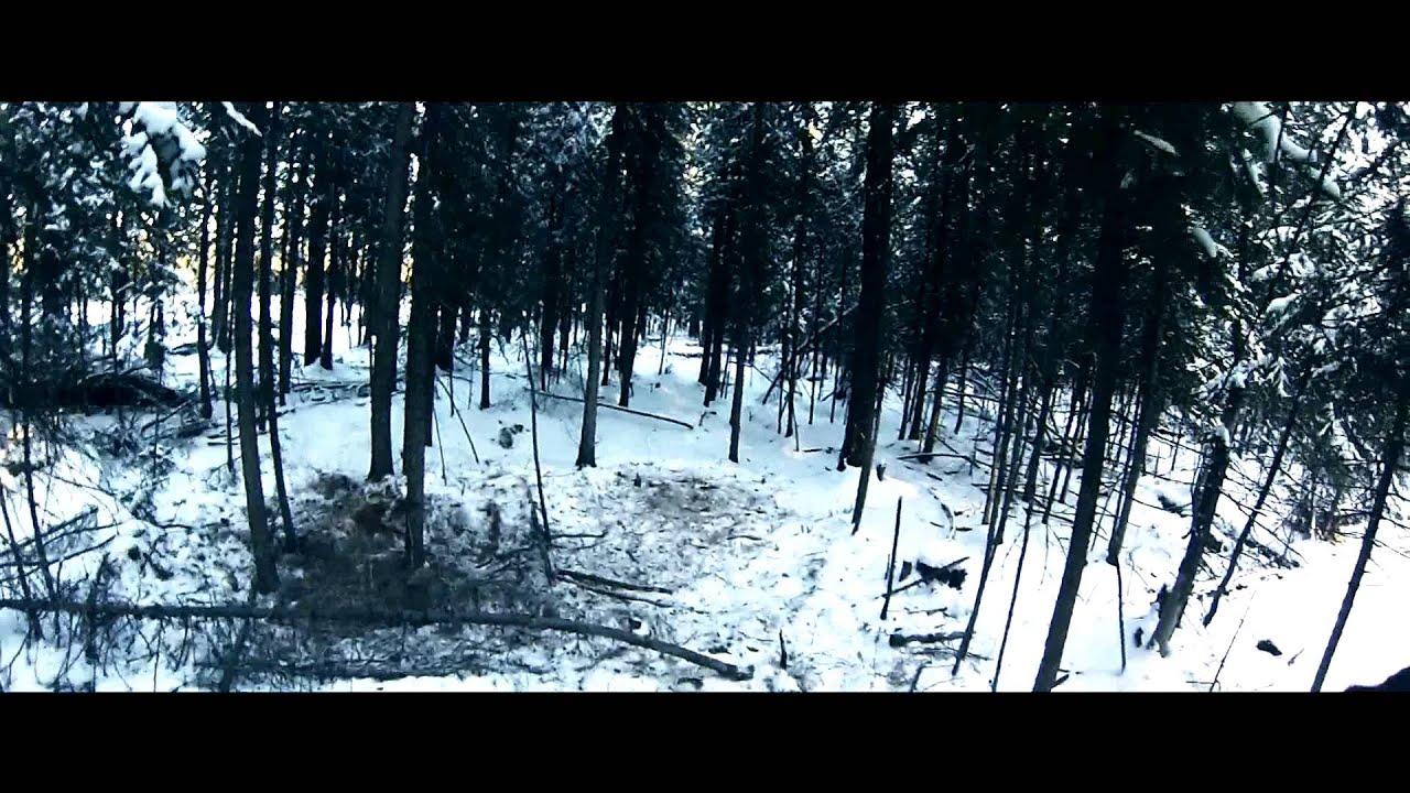 Effects of wolves жесть! слабонервным не смотреть! волки напали на деревню!!!