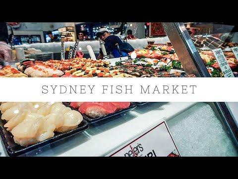 Sydney Fish Market 2018: TcT88 Vlogs