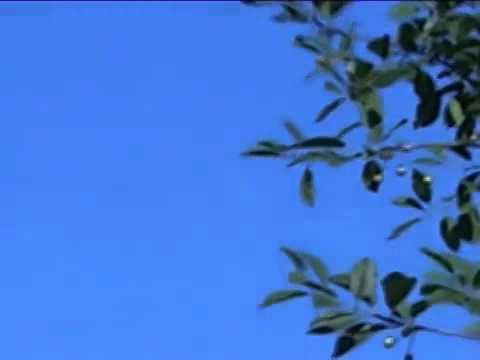 Ukraine Military Shot Down Boeing MH#17