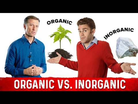 Organic vs Inorganic Minerals: Biggest Confusion