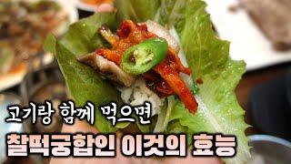 고기와 함께 먹으면 찰떡궁합인 이것 쌈채소 효능과 칼로…