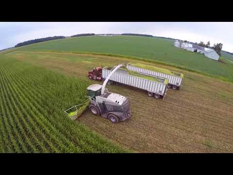 2017 Corn Silage Harvest at Convoy Dairy - Convoy Ohio