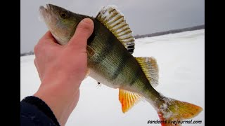 Улётная Рыбалка на Секретном Озере