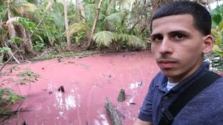 The Pepto-Bismol Lake In Puerto Rico!!!