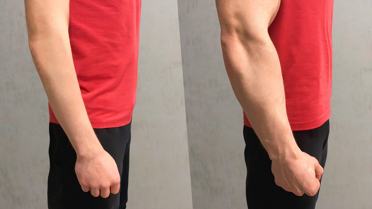 Make Bigger Forearms in 30 DAYS ! ( Home Workout )
