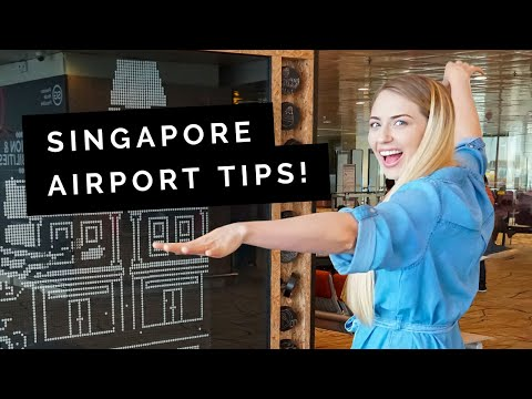 Things to do at CHANGI AIRPORT, Singapore | Little Grey Box