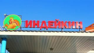 Индейкин - продуктовые магазины в городе Миасс