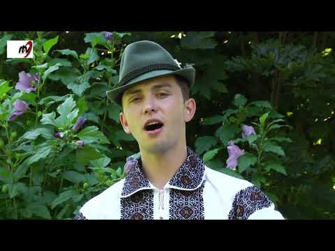 Alexandru Sahlean - Mai mandruta puisor