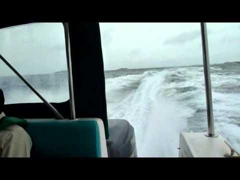 boat charter pattaya