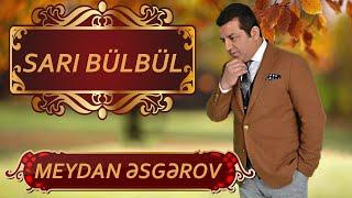 Meydan Esgerov - Sari bulbul (Canli ifa)