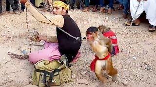 Is Bandriya Ke Dance Ne Sapna Chaudhary Ko Hila Kar Rakh Diya | Video Fom My Phone - New Videos