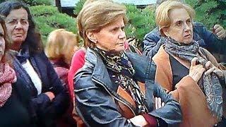 外国人観光客を魅了する盆栽BONSAI 【相互チャンネル登録】 thumbnail