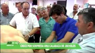 Canal Sur - Andalucia Directo