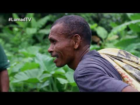 Lumad TV   Episode 14   Aeta (Part 2)