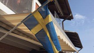 Anti-immigration sentiment fuels far-right Sweden Democrats party