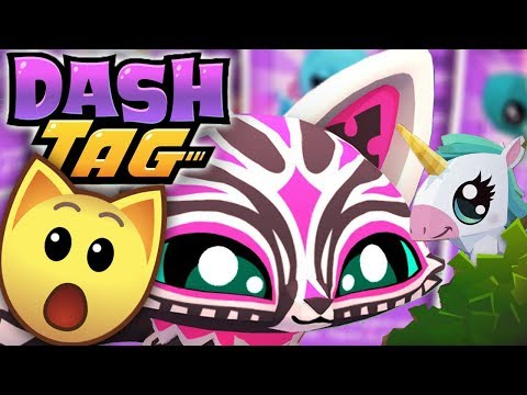 New Pet Added To Dash Tag?! | Dash Tag Endless Runner