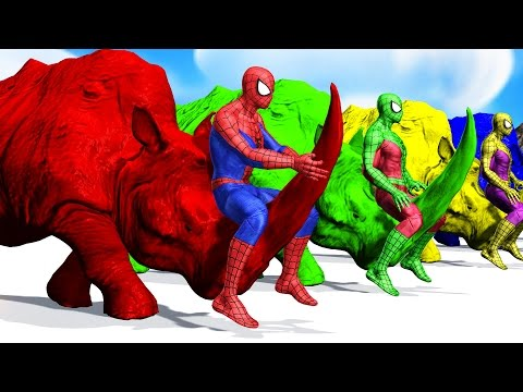 Thumbnail: Colors Spiderman Riding RHINO Colours Cartoon For Kids - Learn Colors Animals For Children