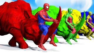 Colors Spiderman Riding RHINO Colours Cartoon For Kids - Learn Colors Animals For Children
