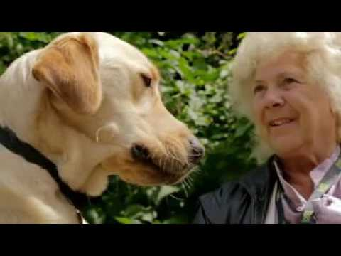 Me and My Guide Dog   Episode 2   S02E02