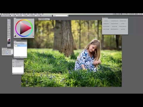 How to paint photos for beginners using Corel Painter