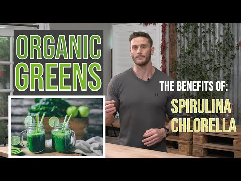 what-does-chlorophyll-do?-the-benefits-of-spirulina-and-chlorella-in-antler-farms-organic-greens