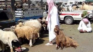 Arabie saoudite: préparatifs pour la fête de l'Aïd