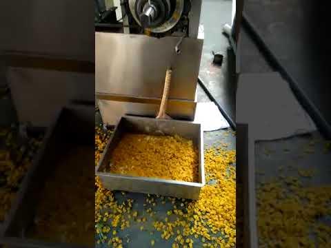 3d pellet  Snack food Machine video