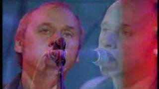 Video Are we in trouble now Mark Knopfler