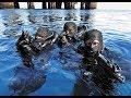 Боевые пловцы ВМС США