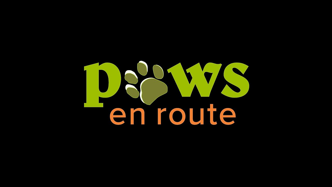 Image result for paws en route