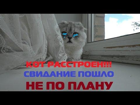 детские знакомства до14лет mail ru