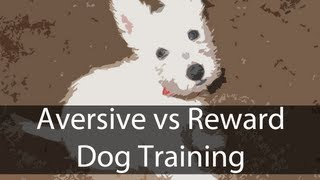 Training A Dog: Aversive Conditioning Vs. Reward Based (reward System)