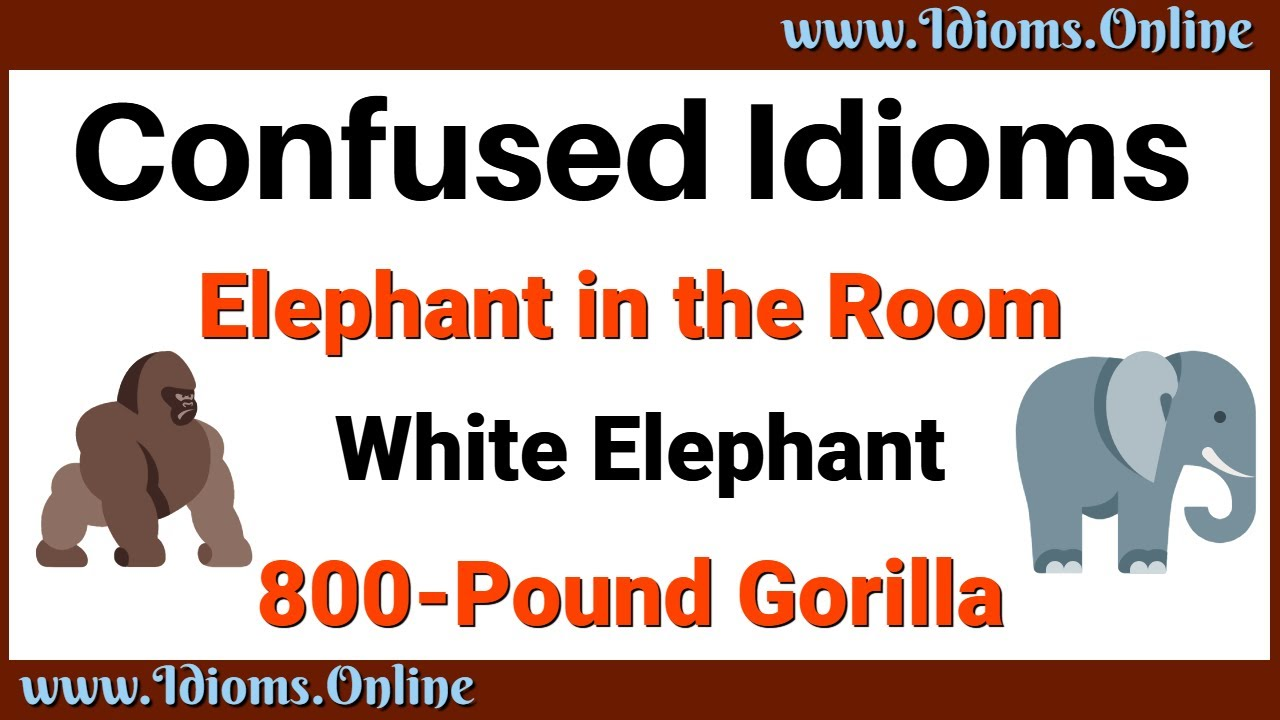 Elephant in the Room, White Elephant, & 20 Pound Gorilla Confused Idioms
