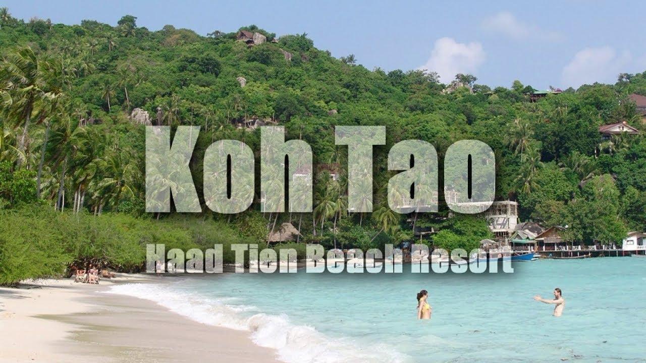 Koh Tao Thailand Haad Tien Beach Resort Shark Bay Hd