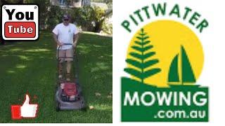 Honda Self Propelled Lawn Mower mulching Sir Walter Buffalo Grass
