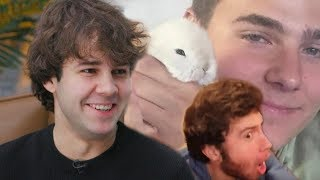 Behind-the-Vlog With David Dobrik