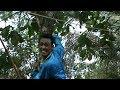 atraksi mendem monyet 🐒 , keren panjat pohon secepat kilat #ebeg Cilacap