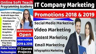 Professional IT Company Marketing Advertisement   Infographics Marketing Campaigns