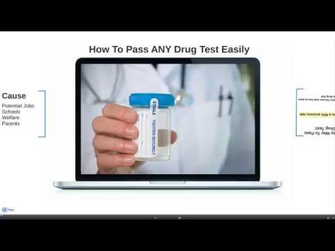 How To Pass Urine Drug Test Naturally  Beat Urine Drug. Carpet Cleaning Glen Burnie Md. Cybersource Credit Card Processing. Jaguar The Animal Information. Car Insurance Century 21 Generator Set Rental. Marijuana And Addiction Locksmith La Habra Ca. Penn State University Online Mba. Online Breast Cancer Support Groups. Baking Soda And Diaper Rash Cable Iowa City