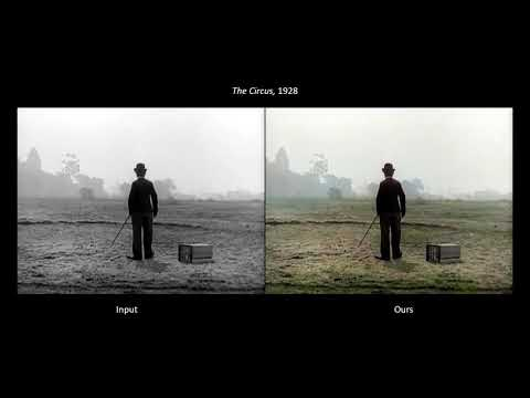 AI Video Colourization Without References or Human Guidance