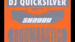 Dj Quicksilver Meets Shaggy - Boombastic (Epic Mix)