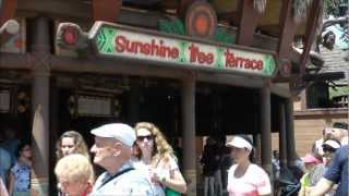 Sunshine Tree Terrace in Magic Kingdom (HD 1080p)