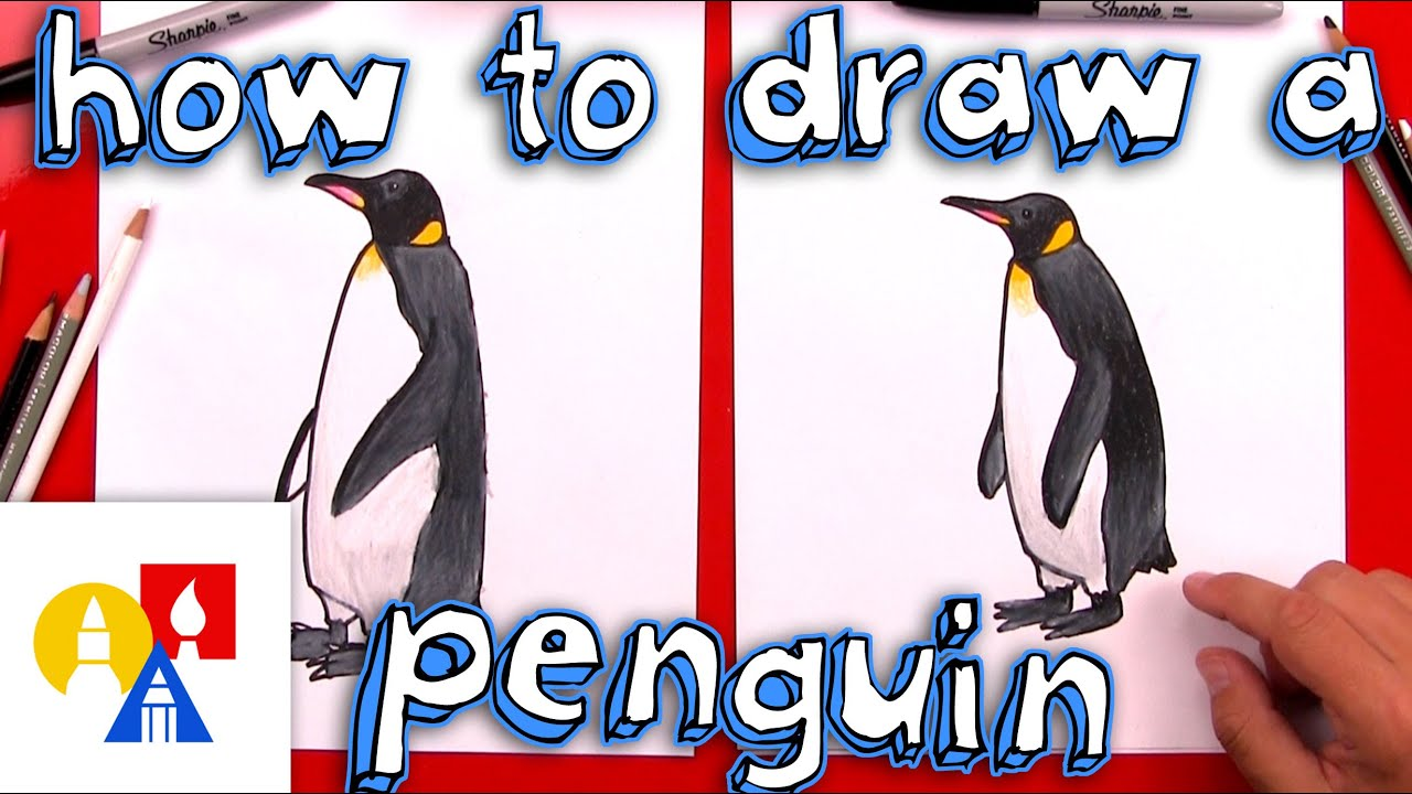 how to draw a realistic emperor penguin youtube